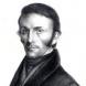PARROT Friedrich